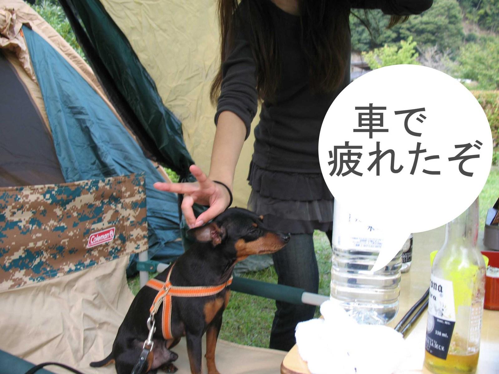 2008_10_05_004_edited1