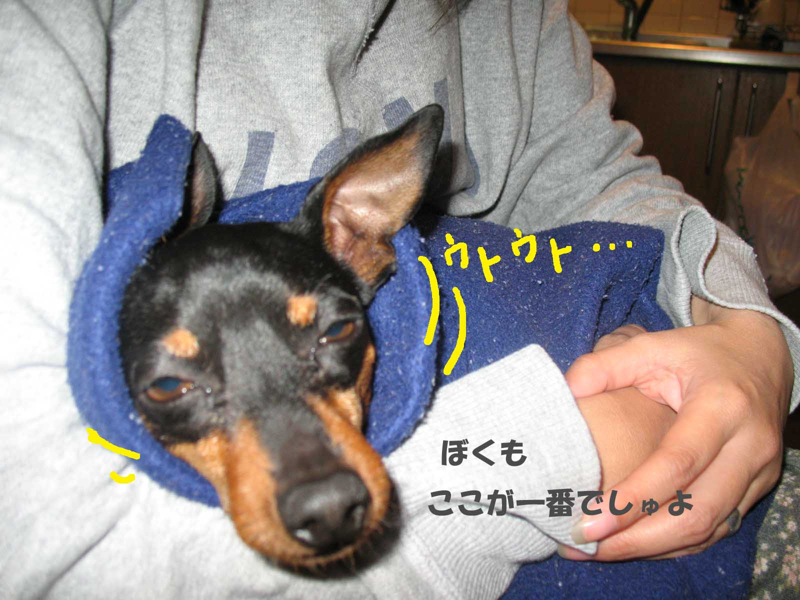 2008_11_19_018_edited1