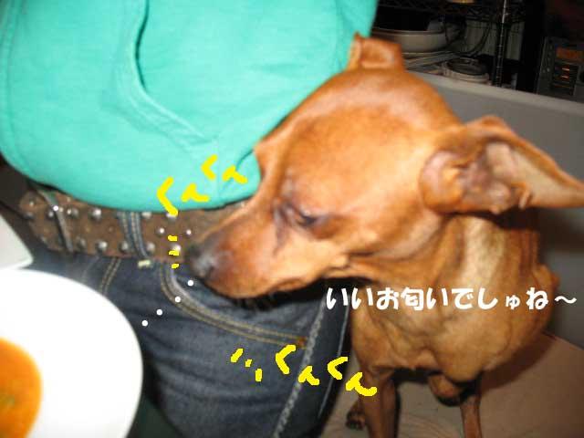 2008_11_24_008_edited1