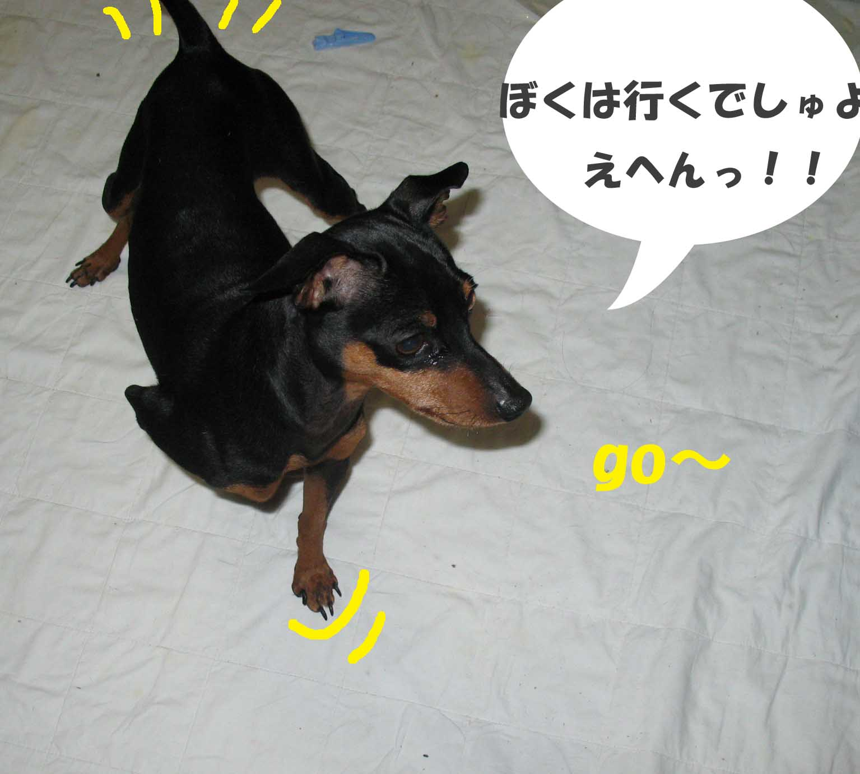 2008_12_05_008_edited1