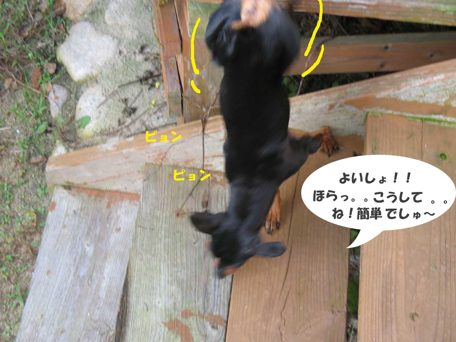2008_12_12_004_edited1