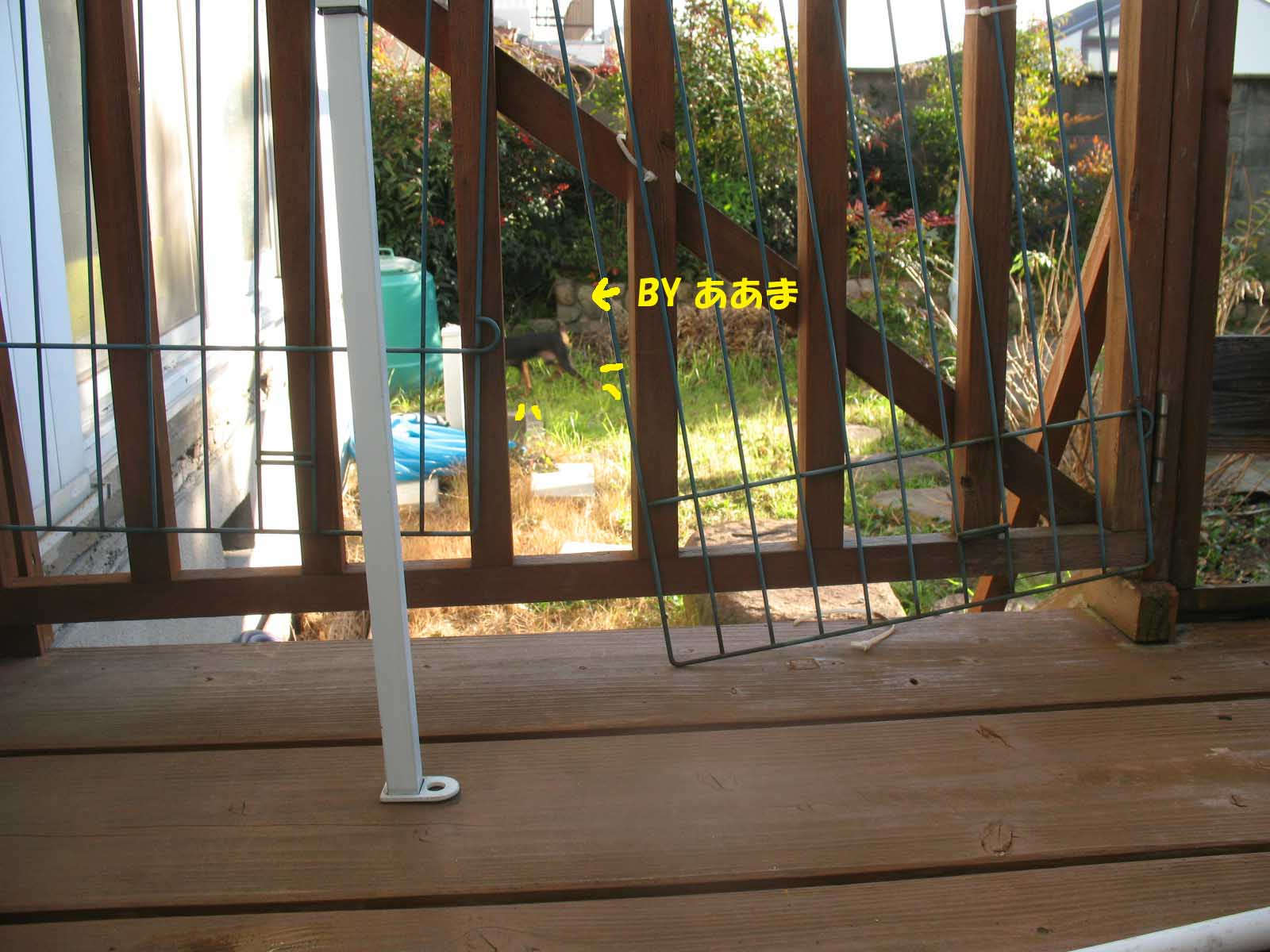 2008_12_26_010_edited1