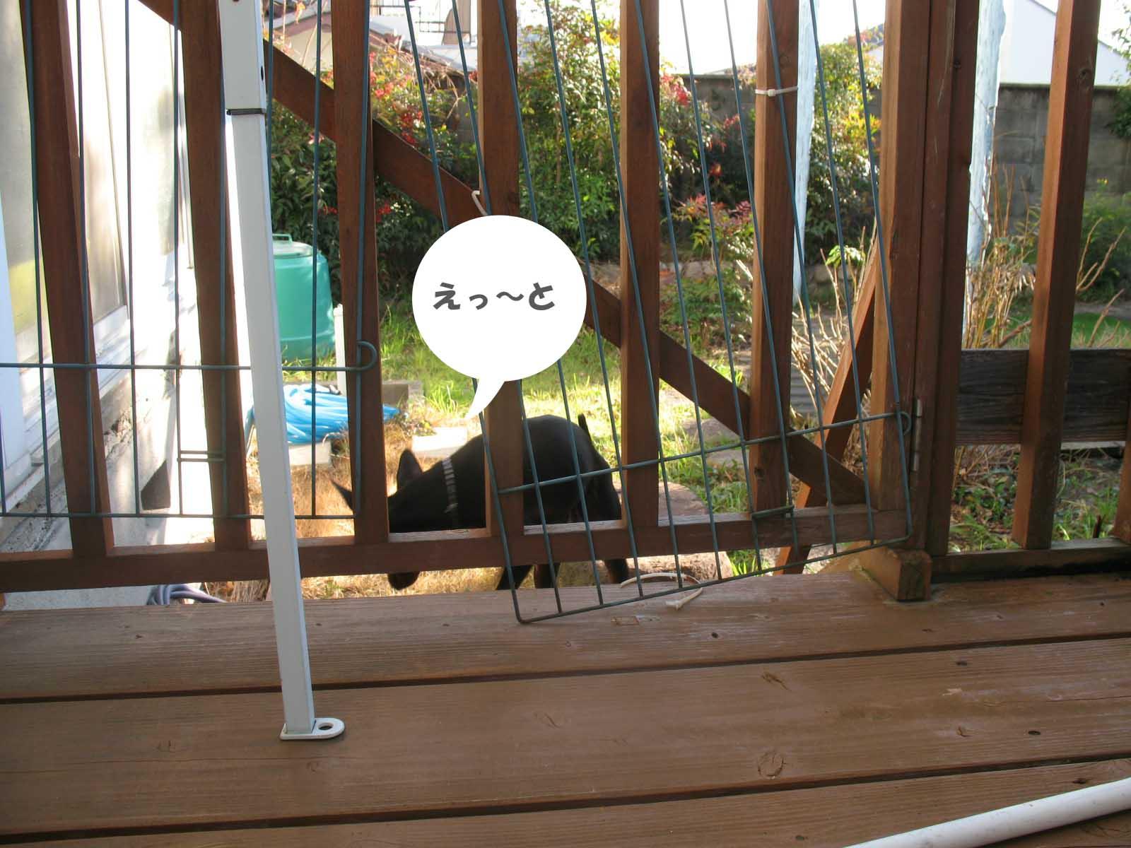 2008_12_26_011_edited1